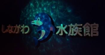 Shinagawa Aquarium - MoePop (a la une)